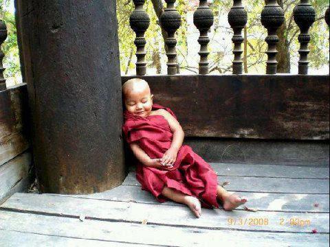 Liten munk