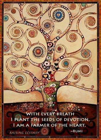 Rumi tree